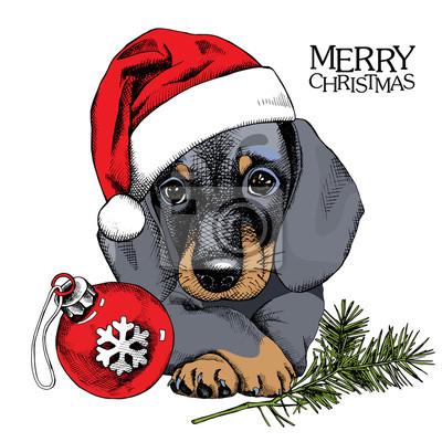 Boże Narodzenie plakat z portretem pies Jamnik w kapeluszu z piłką zabawkę Mikołaja. ilustracji wektorowych.