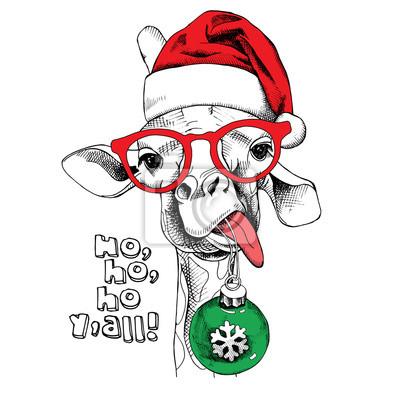 Boże Narodzenie plakat z wizerunkiem portretu Żyrafa w kapeluszu Santa i Boże Narodzenie zabawki z piłką. ilustracji wektorowych.