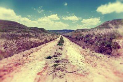 Plakat Camino por el campo.Paisaje y naturaleza