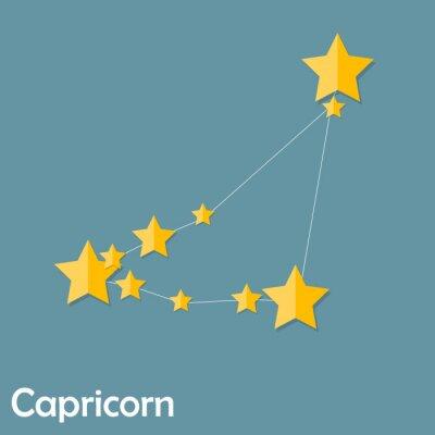 Plakat Capricorn Zodiac Sign of the Beautiful Bright Stars Vector Illus