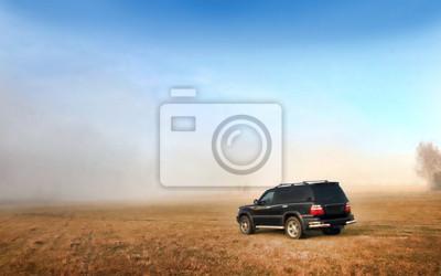 Car on the meadow
