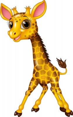 Plakat Cartoon dziecko żyrafa samodzielnie na białym tle