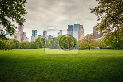 Plakat Central Park w deszczowy dzień