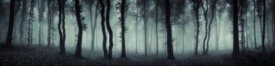 Plakat Ciemna panorama lasu fantasy krajobrazu