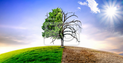 Plakat Climate change withered tree and dry earth.