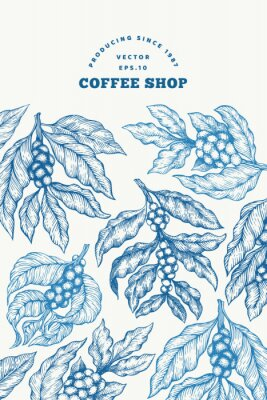 Plakat Coffee tree branch vector illustration. Vintage coffee background. Hand drawn engraved style illustration.