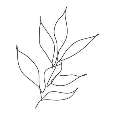 Plakat Continuous line drawing of leaves plant vector. Illustration of botanical hand drawn minimalism artwork.