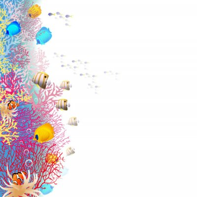 Plakat CoralReef