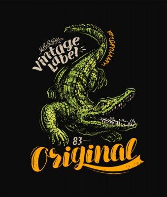 Plakat Crocodile t-shirt design. Vintage poster vector illustration