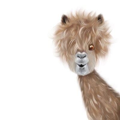 Plakat Cute lama portrait hand painting illustration
