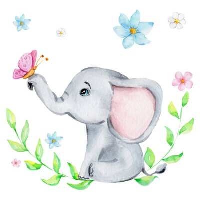 Plakat Cute little elephant with pink butterfly and flowers; watercolor hand draw illustration; with white isolated background