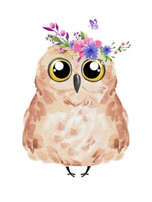 Plakat Cute owl in floral wreath. Watercolor owl set