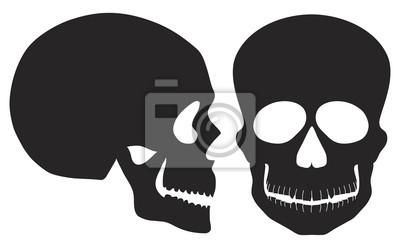 Czarno-białe czaszki z przodu i widok z boku