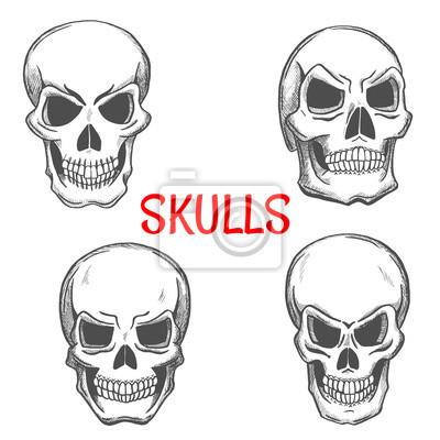Czaszki i szkieletu craniums szkic ikony