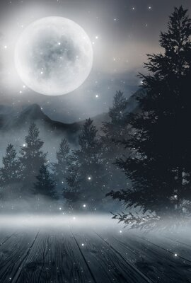 Plakat  Dark abstract winter forest background. Wooden floor, snow, fog. Dark night background in the forest with moonlight. Night view, magic