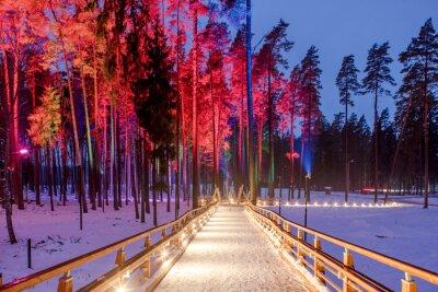 Plakat Drewniany most w parku leśnym. Nocne wielokolorowe światła.