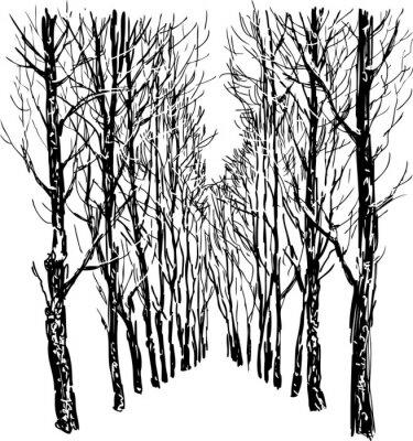 Plakat Drzewa w parku zimą