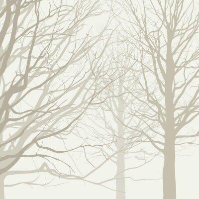 Plakat Drzewa w tle