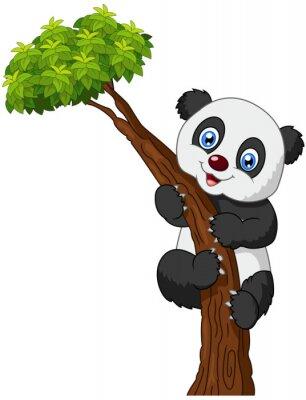 Plakat Drzewo wspinaczka Cute panda kreskówki