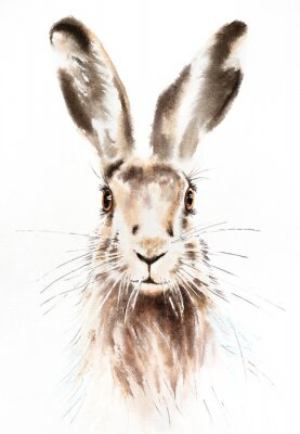 Plakat Easter bunnies watercolor illustration, rabbit portrait isolated