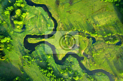 Plakat Ecology and environment concept. Green nature from above. Aerial view on river landscape. Healthy nature