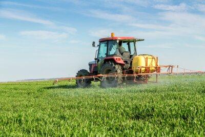 Plakat Farmer rozpylanie zielonym polu pszenicy