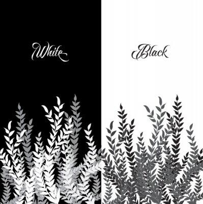 Gałęzie rośliny z liśćmi, czarne i białe