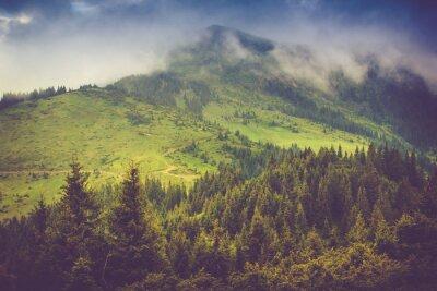 Plakat Górski krajobraz i lasy Płyta pokryta mgłą. Dramatyczne niebo zachmurzone.
