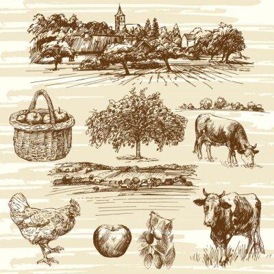 Plakat gospodarstwo, żniwa, krajobrazu wiejskiego - ręcznie rysowane zestaw