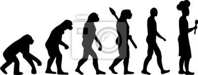 Plakat Gotowanie Evolution