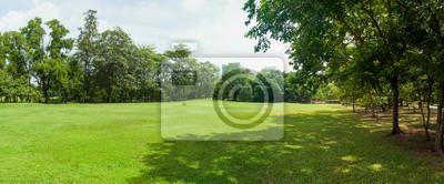 Plakat green grass field in big city park