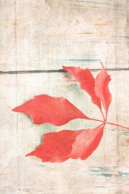 Plakat Grungy tła z czerwonym liściem