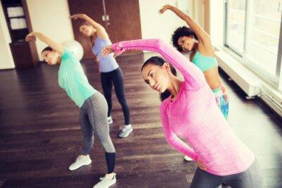 Plakat grupa szczęśliwych kobiet pracujących w siłowni