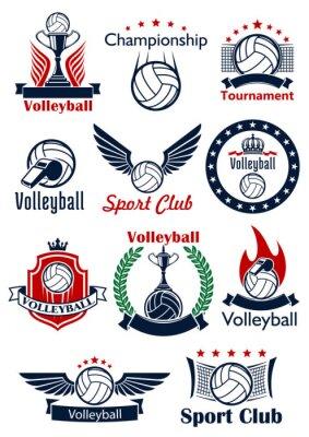 Plakat gry Siatkówka ikony, emblematy i symbole