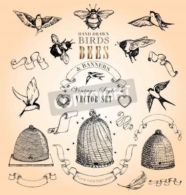 Plakat Hand Drawn ptaki, pszczoły i Banery Vector Set Vintage Style