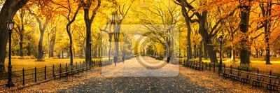 Plakat Herbst Panorama im Central Park w Nowym Jorku, USA