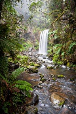 Plakat Hopetoun Falls, zaciszne wodospad w Otway Ranges, Australia