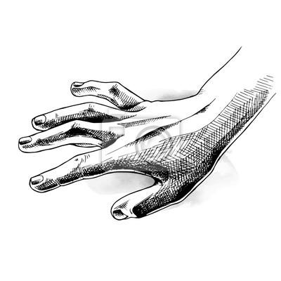 ilustracji wektorowych.