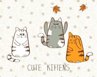 Plakat Ilustracji wektorowych Cute doodle trzech kociąt.