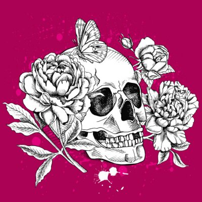 Image of a skull with flowers Rose, Peony and butterfly on vinous background. Vector illustration.