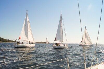 Plakat Jacht żaglowy są na wodzie wzdłuż brzegu