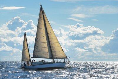 Plakat Jacht żaglowy w słoneczny dzień w wodach Zatoki Ryskiej