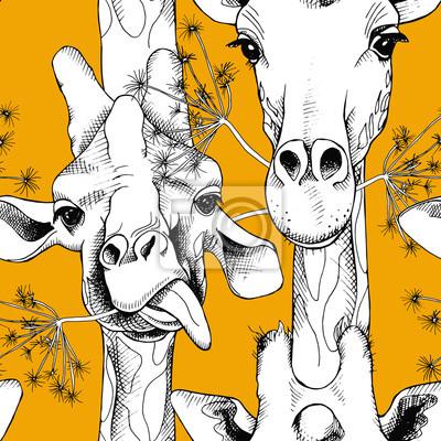 Jednolite wzór z wizerunkiem żyrafy przeżuwając trawę. Wektor czarno-białych ilustracji.