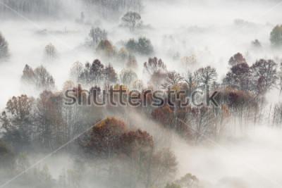 Plakat Jesień krajobraz, Włochy