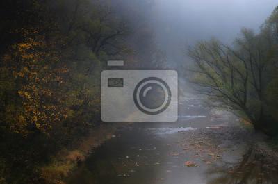 Plakat Jesienna rzeka