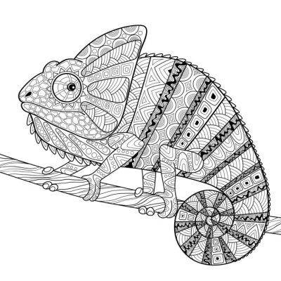 Plakat Kameleon. Dorosły antystresowy farbowanie strony. Czarno-białe rysowane ręcznie Bazgroły dla kolorowanka