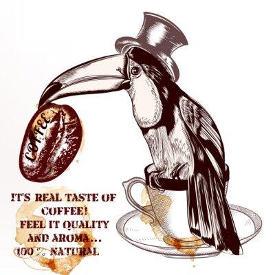 Plakat Kawa tło wektor lub plakat z ręcznie rysowane ptak tukan godz