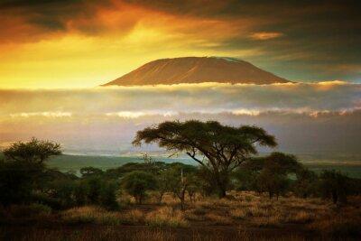 Plakat Kilimandżaro. Savanna w Amboseli, Kenia