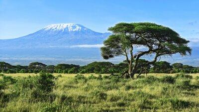 Plakat Kilimandżaro w Kenii