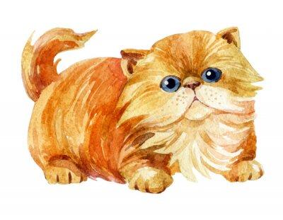 Plakat Kitten siedzi.